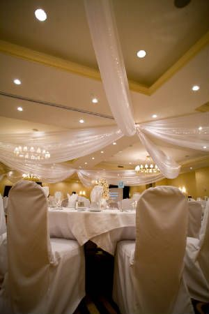 Sitting Pretty - Ceiling Draping