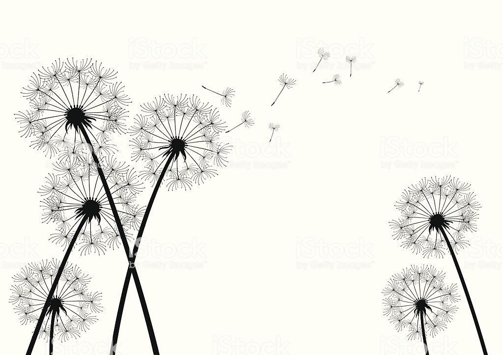 Dandelion Flowers Clipart Free Stock Photo Free Clip Art Collage Art Projects Dandelion Drawing