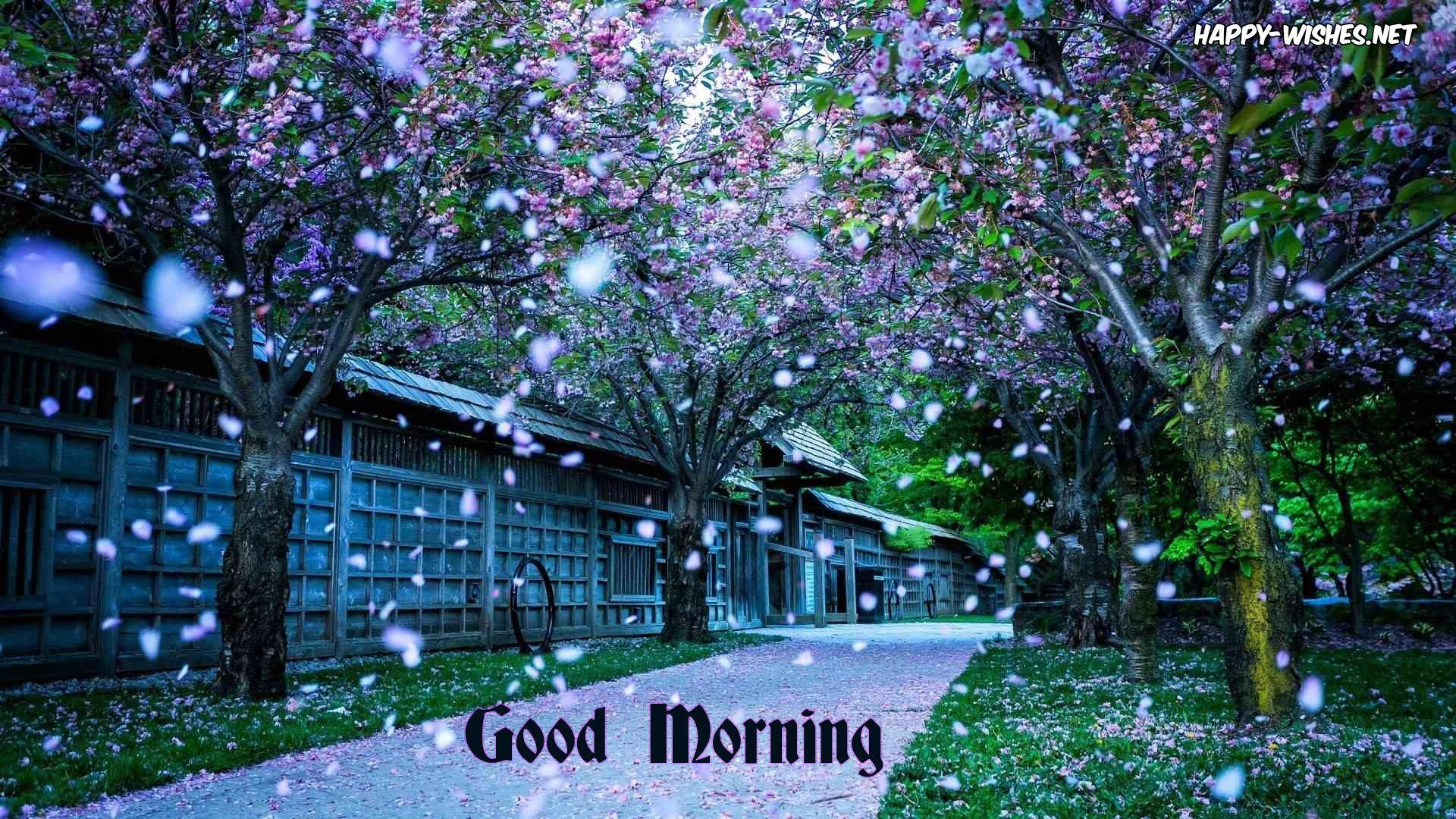 Good Morning Nature Images Spring Desktop Wallpaper Scenery Wallpaper Beautiful Nature Wallpaper