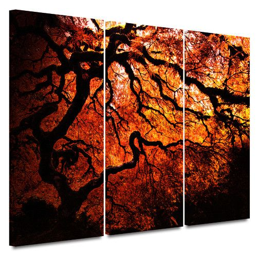 Artwall Fire Breather Japanese Tree By John Black 3 Piece Graphic Art Canvas 3 Piece Canvas Art Tree Canvas Japanese Tree