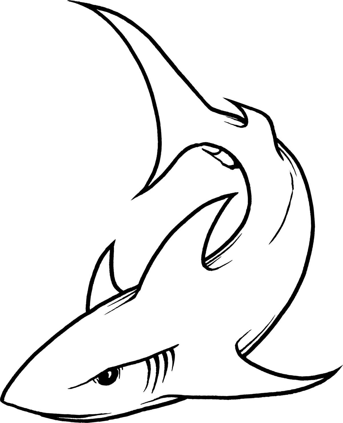hammerhead shark outline clipart panda free clipart images [ 1200 x 1479 Pixel ]