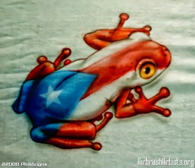 If i ever get a tattoo this is what i want inside a flor for Puerto rican frog tattoo
