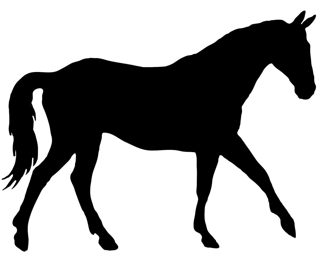 Horse Silhouette Related Keywords Amp Suggestions Horse