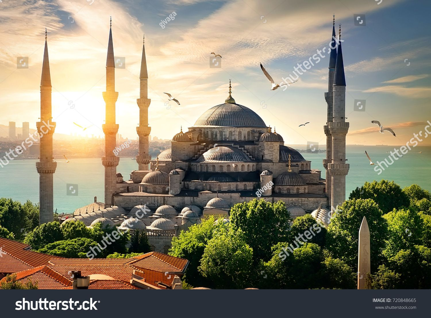 Seagulls Over Blue Mosque And Bosphorus In Istanbul Turkey Sponsored Affiliate Mosque Blue Seagu Cool Places To Visit Cultural Destinations Places To Go
