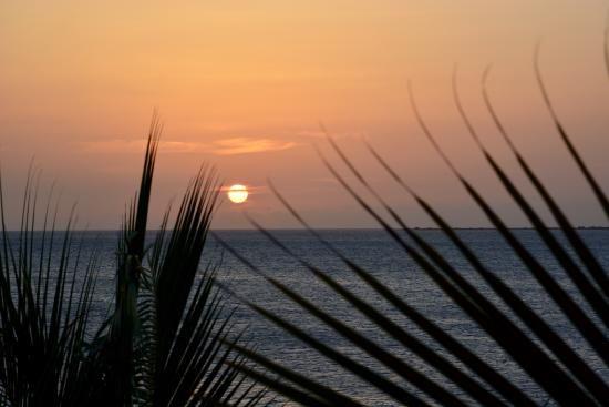 Bellafonte Luxury Oceanfront Hotel (Bonaire/Kralendijk) - Hotel Reviews - TripAdvisor