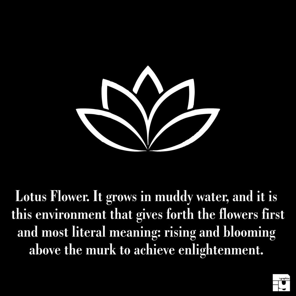 Mini Lotus Flower Tattoo And Description Tattoos With Meaning