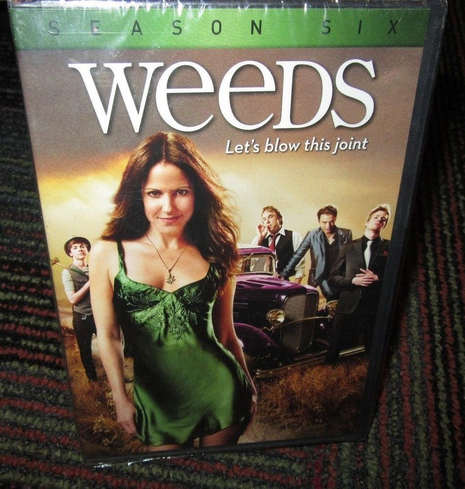 Weeds Season 6 3 Disc Dvd Set Queen Of Green Showtime Elizabeth Perkins New Movies Dvd Set Elizabeth Perkins Mary Louise Parker