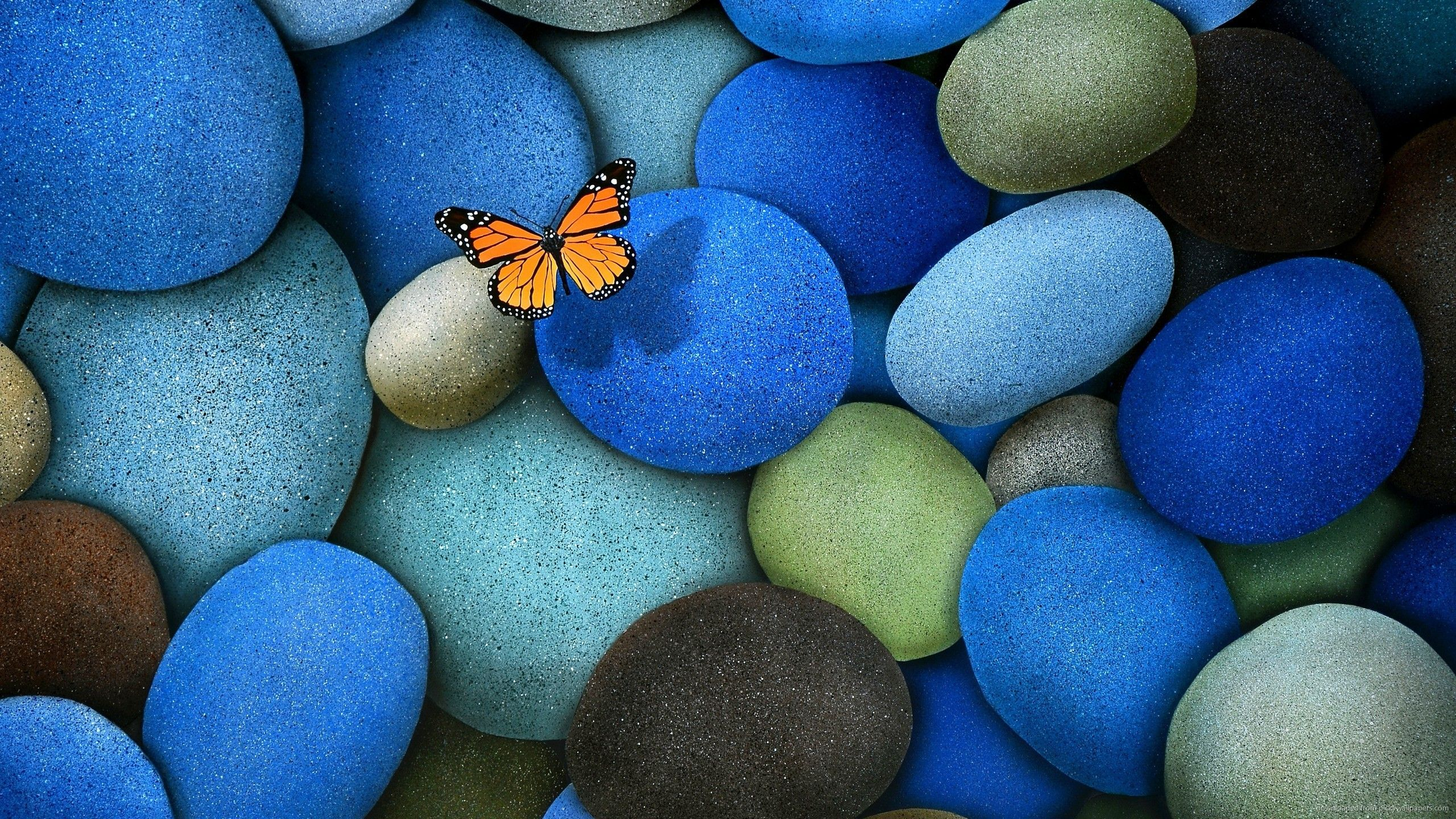nice pebble hd image  amazingpictcom  wallpapers  pinterest  - wallpaper