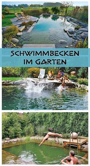 Pool | Garden landscaping, Planting and Gardens