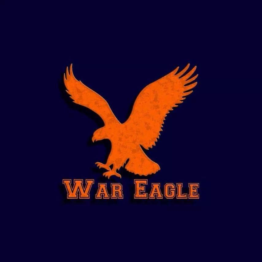 War Eagle | All Things Auburn | Pinterest | Eagle, Auburn ...