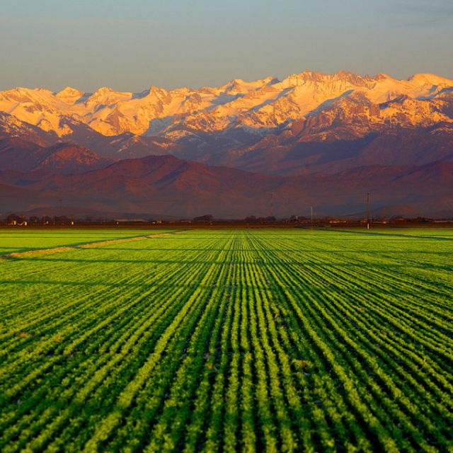 This Is What The Landscape Looks Like At The Farm. Please