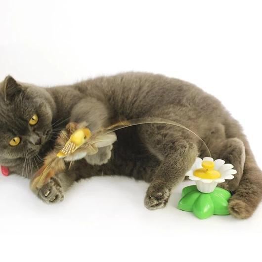 Interactive Bird or Butterfly Toy For Cats Cat toys, Pet
