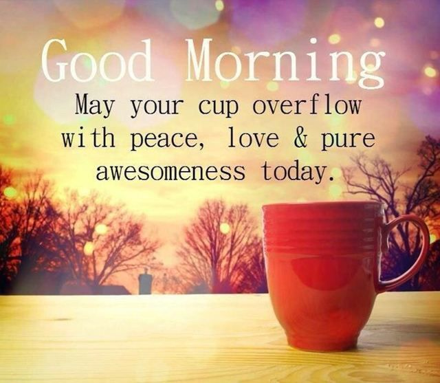 Goodmorning Quotes Cool Good Morning Quotes That Will Make Overflow With Peace Love