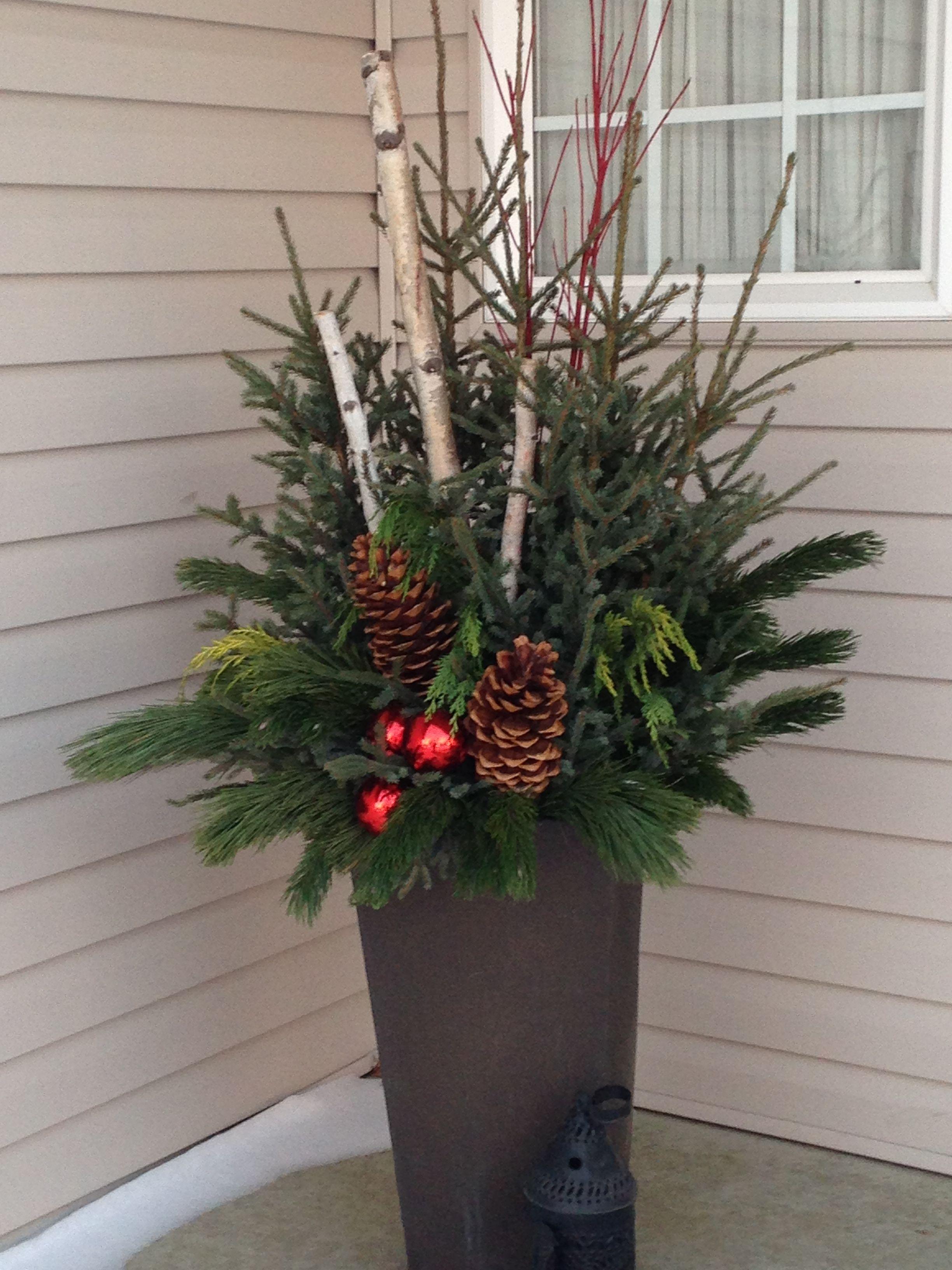 GroVert| living wall| Vertical Garden| Vertical Art| Vertical Décor| DIY vertical| Grown By You| www.buylivingwalls.com #weihnachtsdekohauseingangaussen - minigarden #christmasdeko