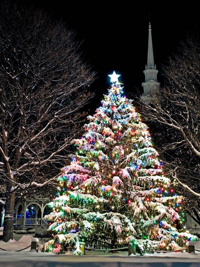 Keene, NH holiday Christmas Tree Central Square - Keene, NH Holiday Christmas Tree Central Square Christmas Lights