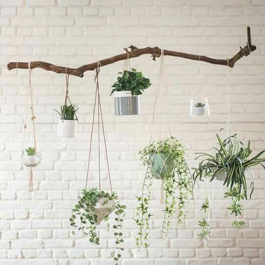 Home Decor Exposed White Brick Wall Indoor Plants Hanging Pots Branch Brick Decor Expos Hanging Plants Indoor Hanging Plants Brick Wall Decor