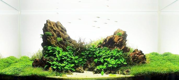 dragon-stone_04.jpg 685×308 pikseli