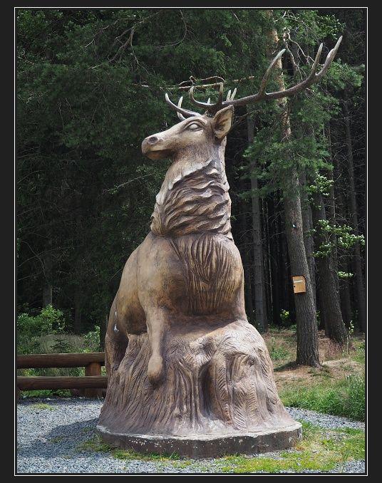 jelen, Slavětín