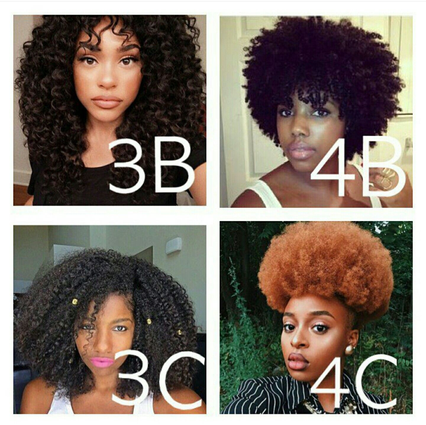 Lol Im 3b 4b And 3c Curly Hair Types Natural Hair Styles Black Natural Hairstyles