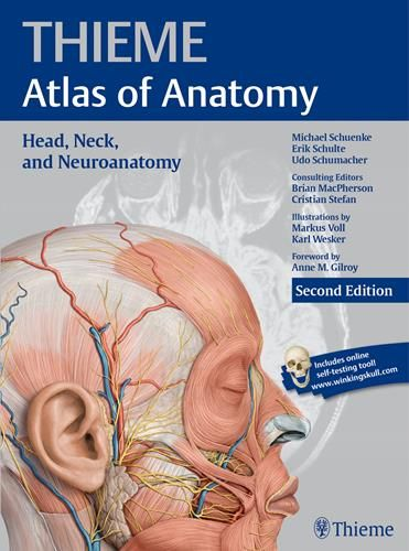 Thieme Atlas Of Anatomy Head Neck And Neuroanatomy 2nd Edition