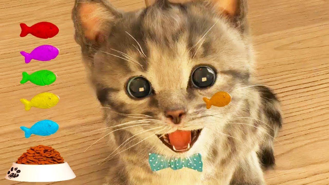 Play Fun Pet Care Kids Game Little Kitten My Favorite Cat Fun Cute Ki Kittens Cutest Cool Pets Cute Kitten Gif