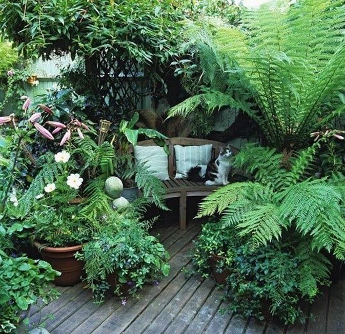 Photo of 43 Erstaunliche kleine geheime Garten-Design-Ideen – DecoRecord