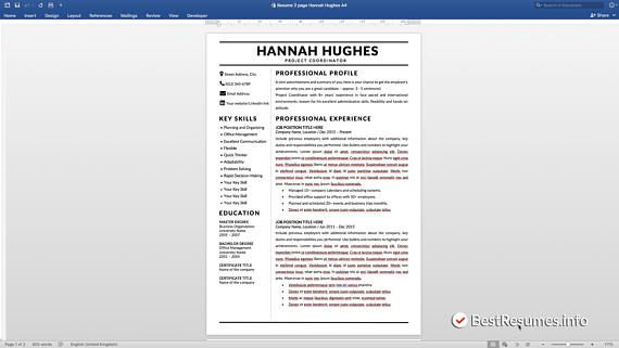 Modern Resume Template, Resume Template Word, Clean Resume Template - Cv Example
