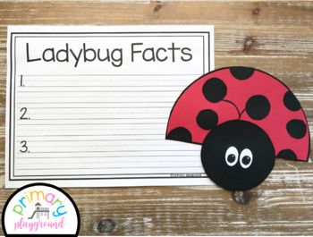 Ladybug Craft With Writing Prompts/Pages  - Ladybug facts