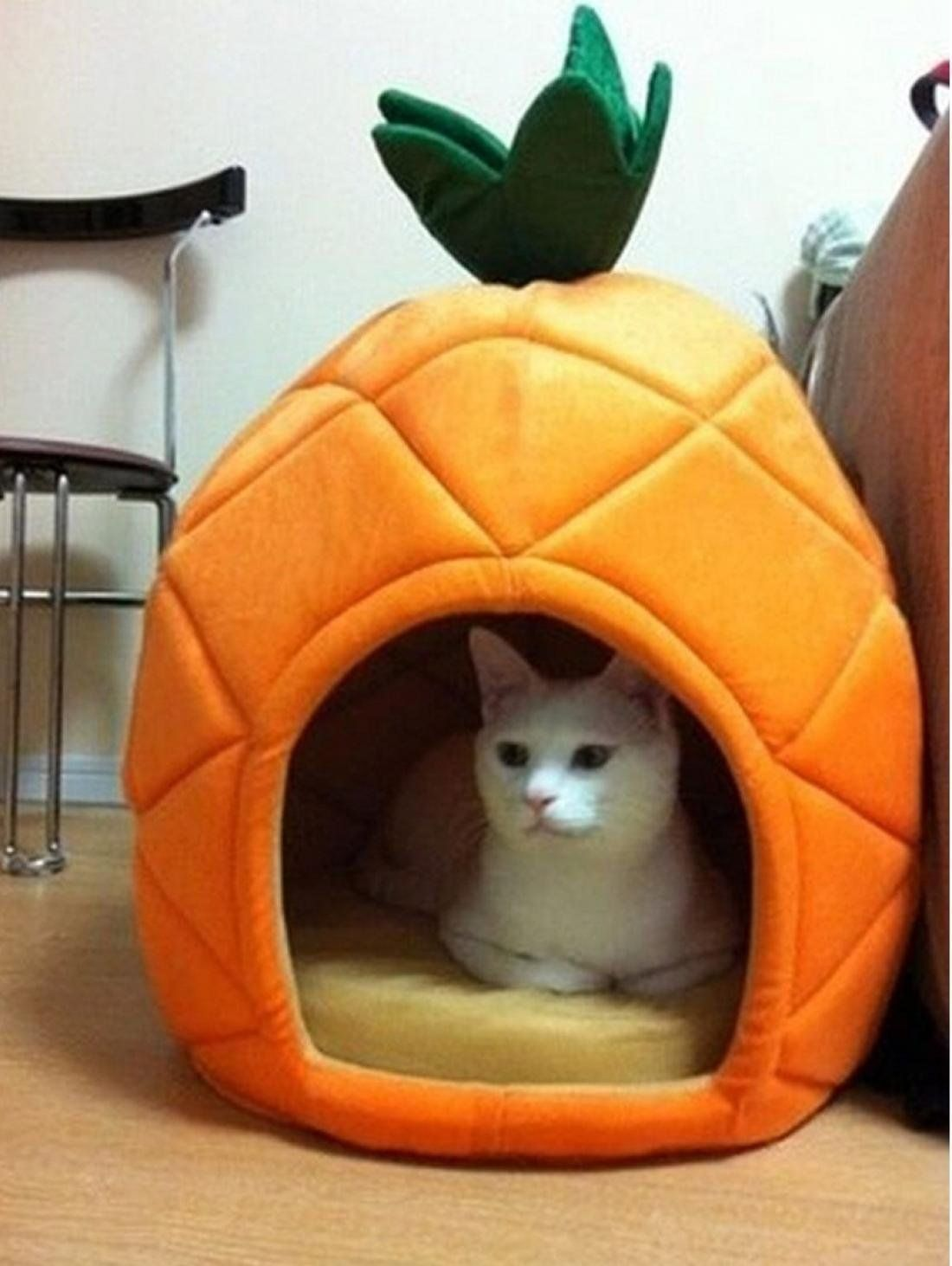 1Pc Famous Popular Pet Bed Size L Soft Cat Rug Puppy Tent Warm Portable Couch Style Pineapple * See this great image