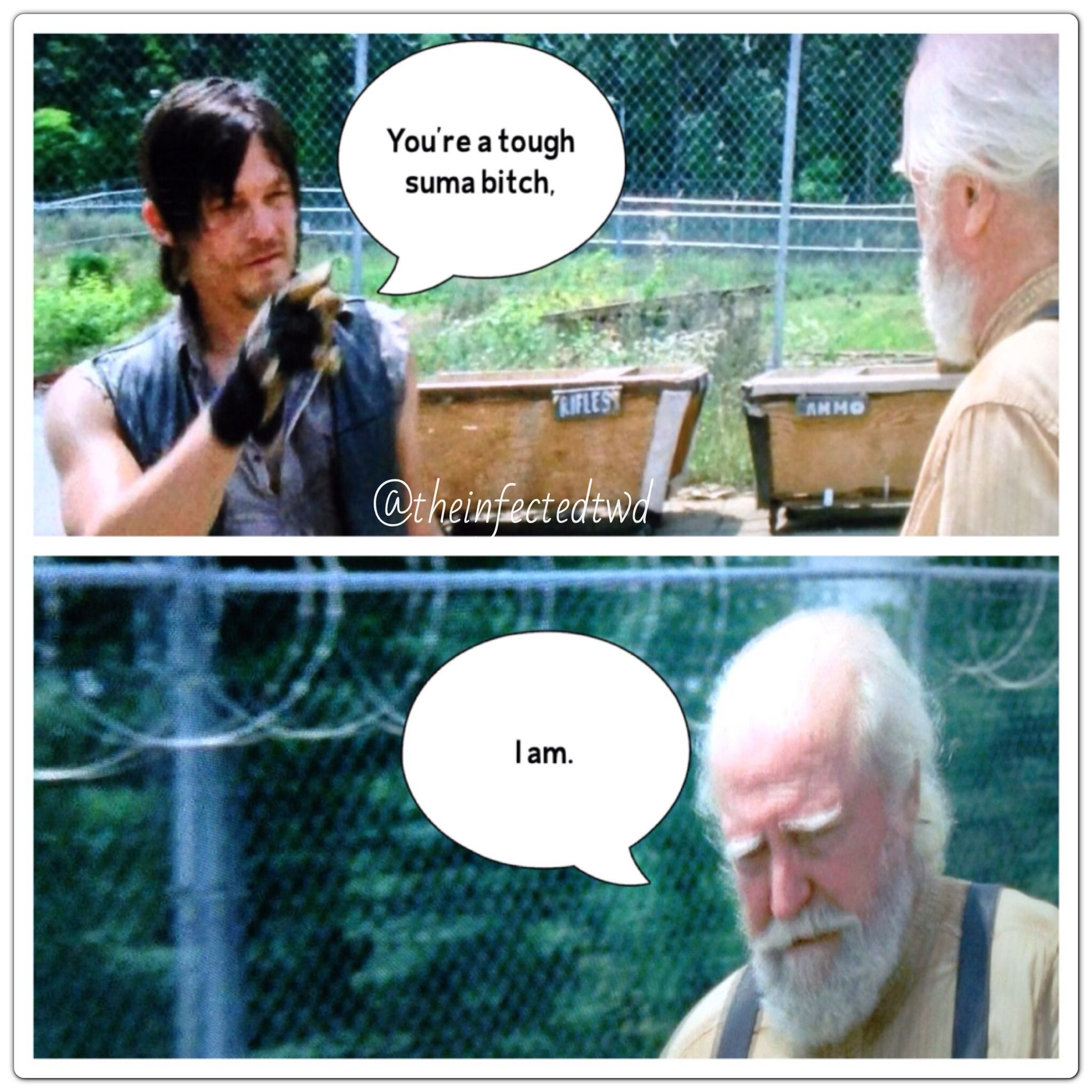 Daryl and Hershel ~ The Walking Dead