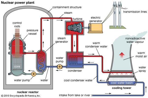 Image result for anatomy of a nuclear power plant