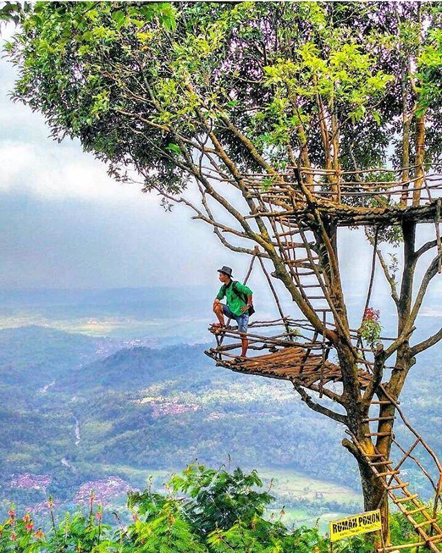 Menikmati Alam Ciptaanmu Rumah Pohon Igir Wringin Dolanpanusupan Rumahpohon Igirwringin Purbalinggahitz Wisatapurbalingga Purbalinggakeren Purbali