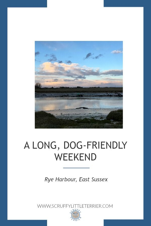 A long, dog-friendly weekend in Rye Harbour. #PubLunches #RyeHarbour #Beaches #EastSussex