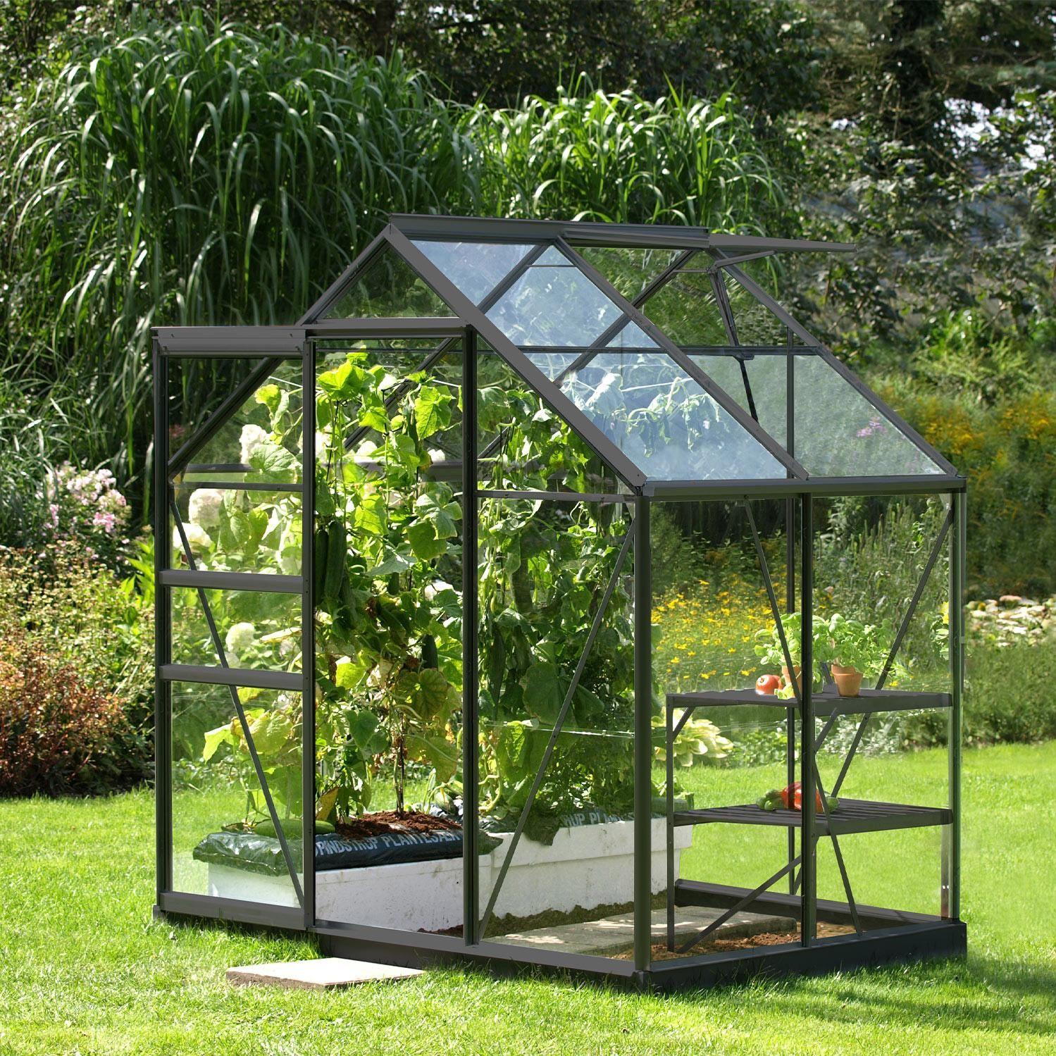 Serre De Jardin En Verre Trempe 3 Mm Lams Allium Venus 2500 Anthracite 2 5 M Lams En 2020 Serre Jardin Serre En Verre Petite Serre De Jardin