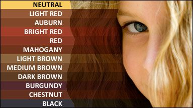 1000 images about hair color charts on pinterest blonde hair colors colour chart and henna - Henn Color Auburn