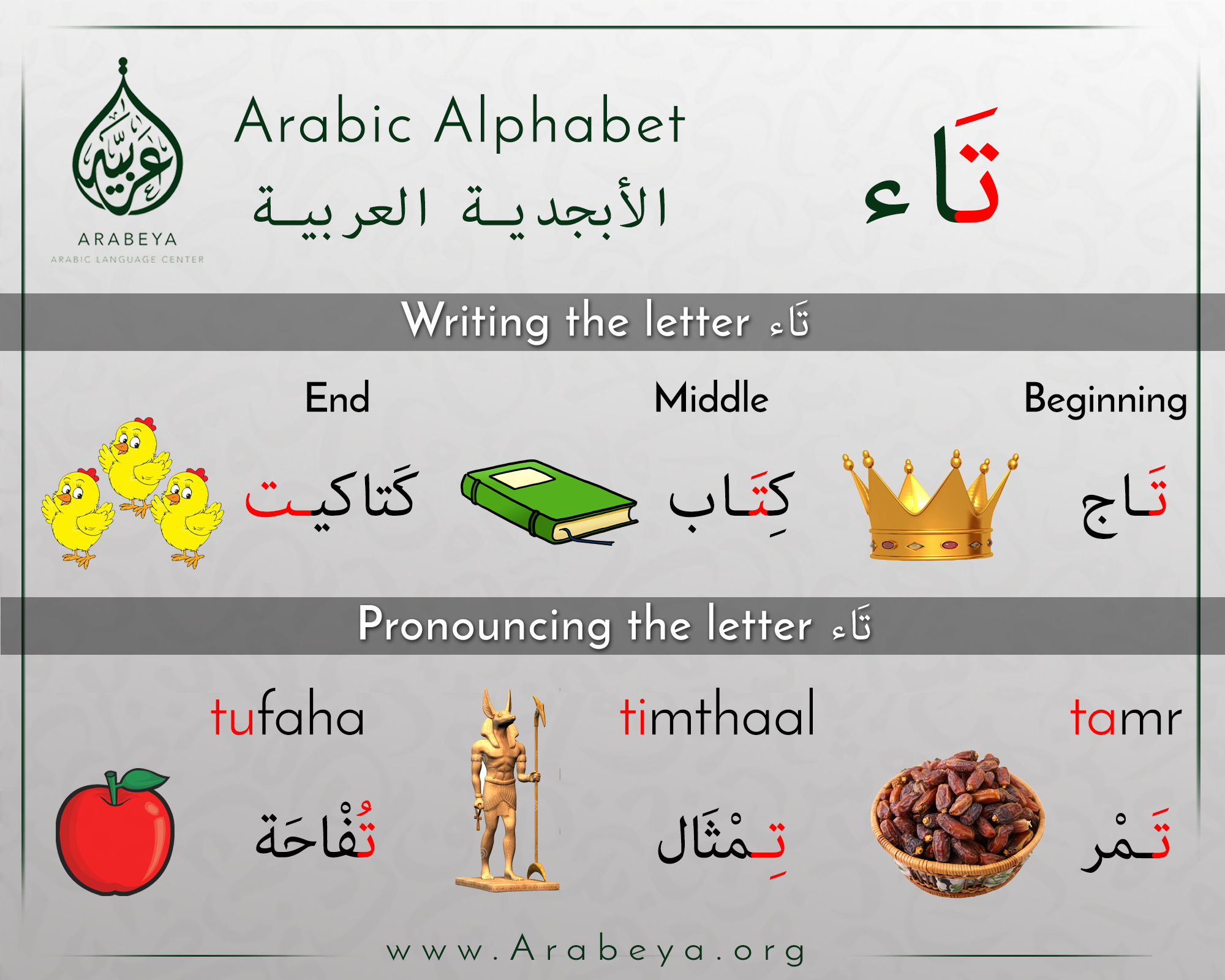 what letter is in the middle of the alphabet حرف التاء the letter taa 39 arabic alphabet arabisch 25573 | 65cf172b10e1c162560364442a782fda