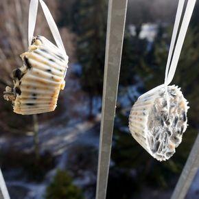 vogelfutter selber machen bastelei vogelfutter selber machen vogelfutter und v gel. Black Bedroom Furniture Sets. Home Design Ideas