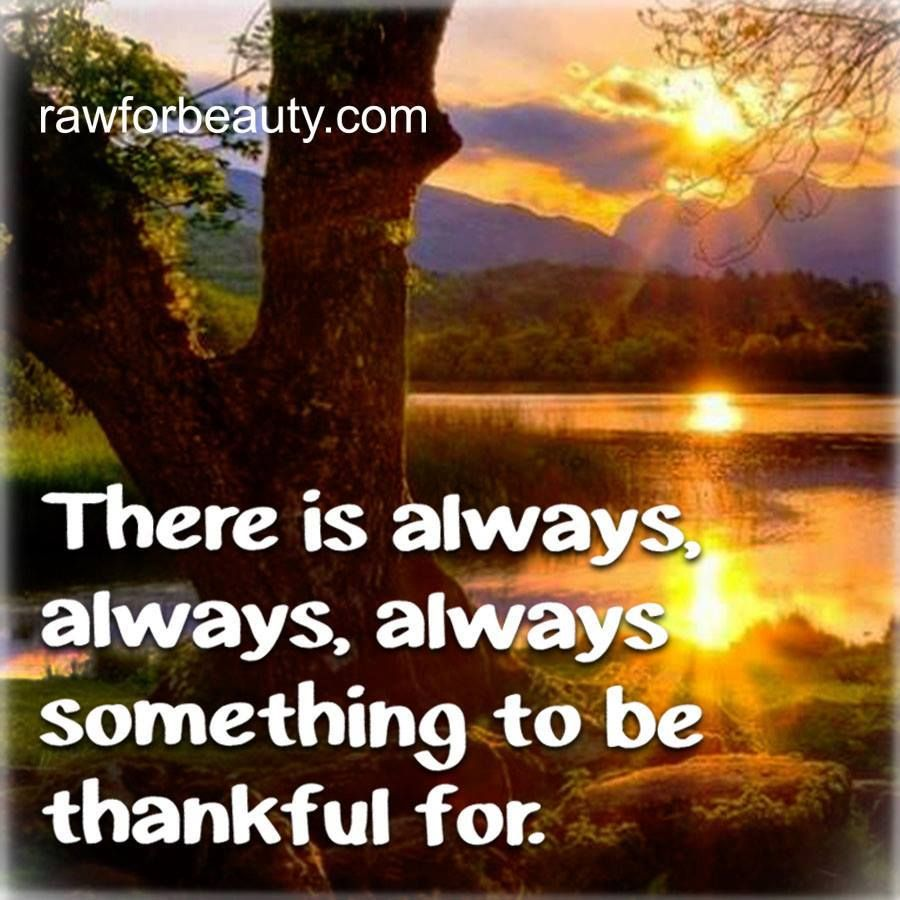 There is always, always, always something to be thankful for. |