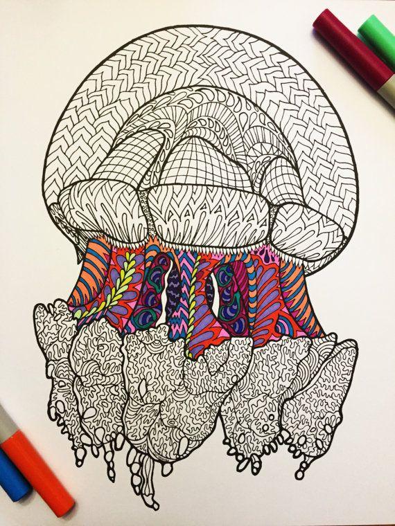 Ornate Cassiopeia Jellyfish