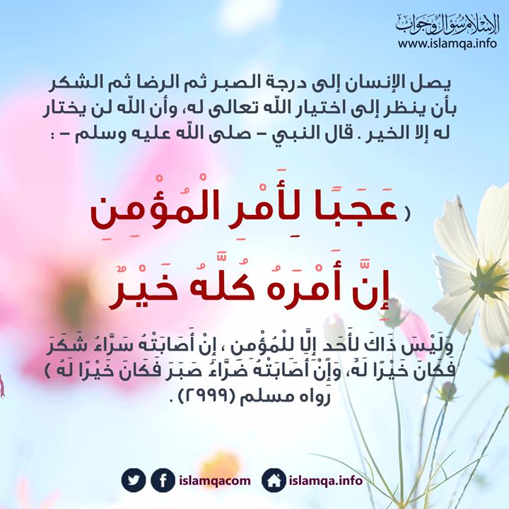 المؤمن يبحث في البلاء عن الأجر ولا سبيل إليه إلا بالصبر ولا سبيل إلى الصبر إلا بعزيمة إيمانية وإرادة قوية وليتذكر قول الرسول صلى Life Quotes Islam Quotes