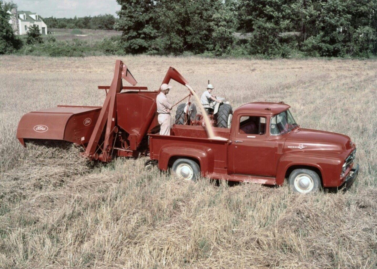 efd199a8a1832 56 FORD farm truck | Ford classic | Old pickup trucks, Farm trucks ...