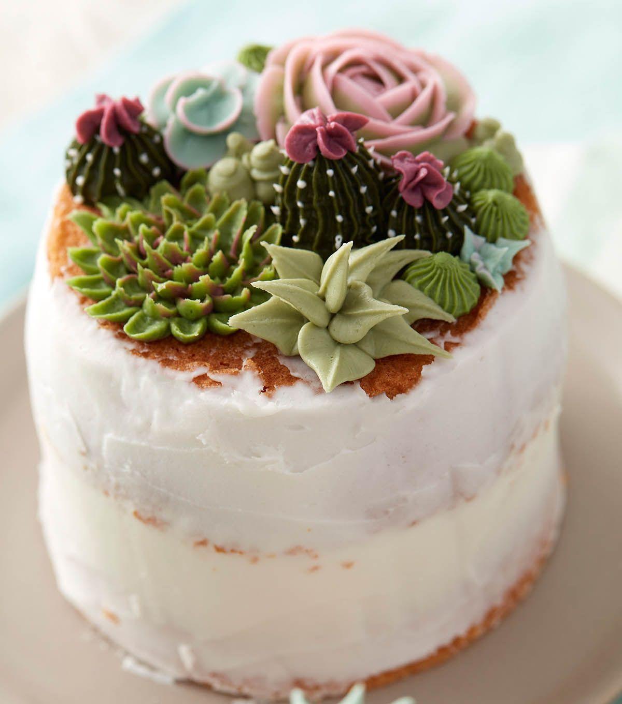 How to make succulent cakes joann joann succulent