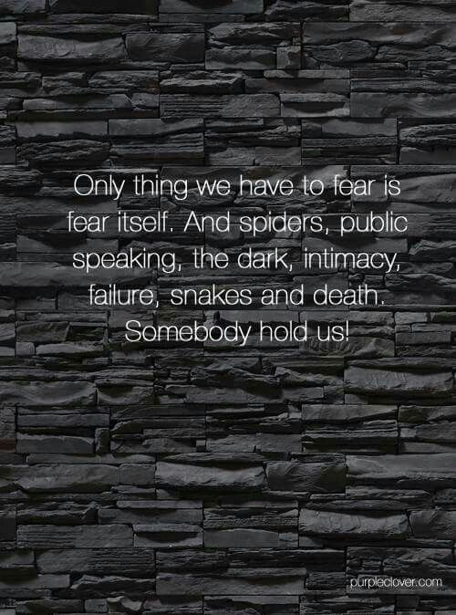 Only thing we have to fear is fear itself. And spiders, public speaking, the dark, intimacy, failure, snakes and  death. Somebody hold us!