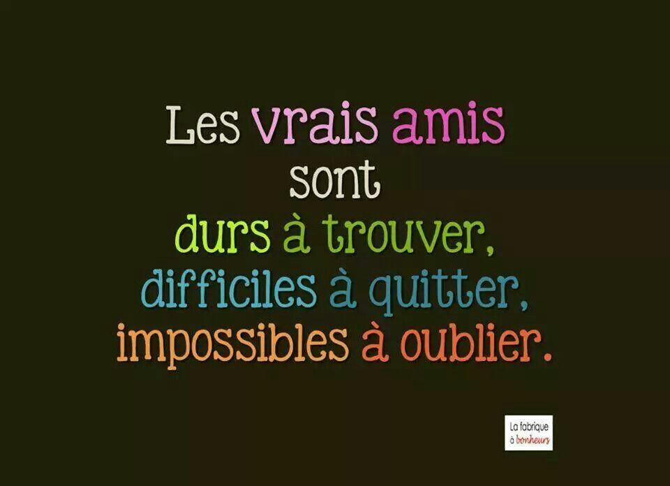 Phrase Pour L Amitié Ro33 Jornalagora