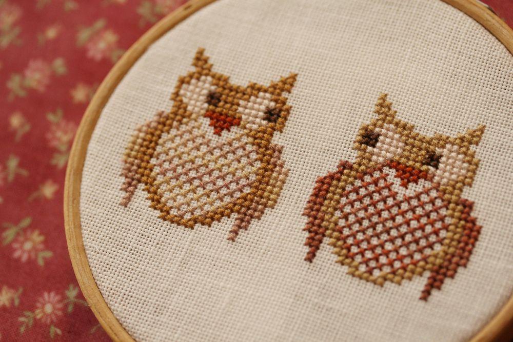 interested owls | Bordado
