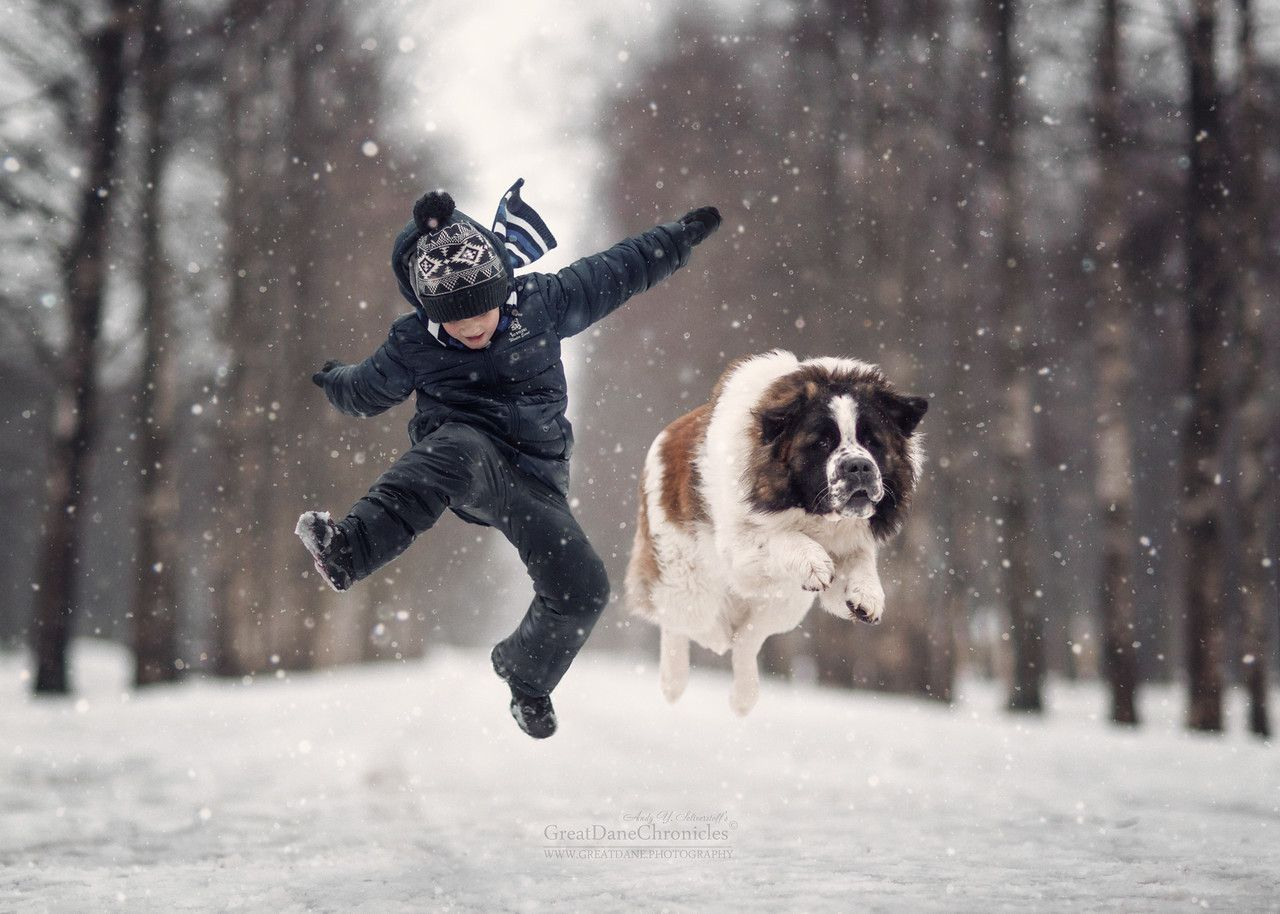Andy Seliverstoff Professional Photographer Russia - Tiny children and their huge dogs photographed in adorable portraits by andy seliverstoff