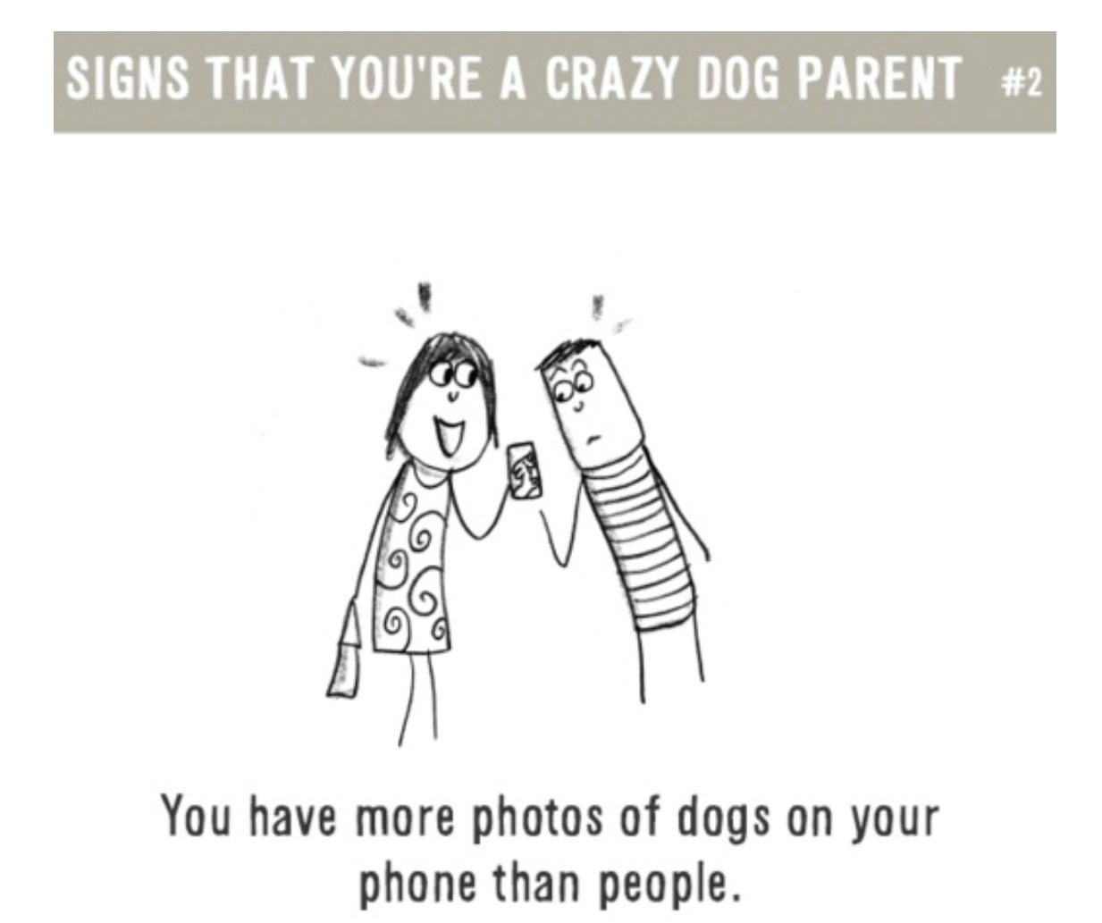 Yes! Lol Dogs, Dog love, Cute dogs