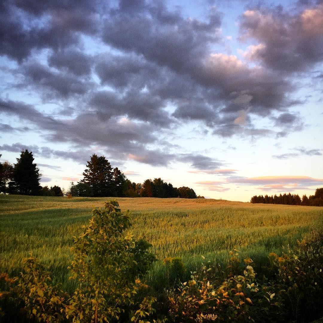 #seenonmyrun #beautiful #landscape #quebec #canada #summertime #sunset #instagood #sky