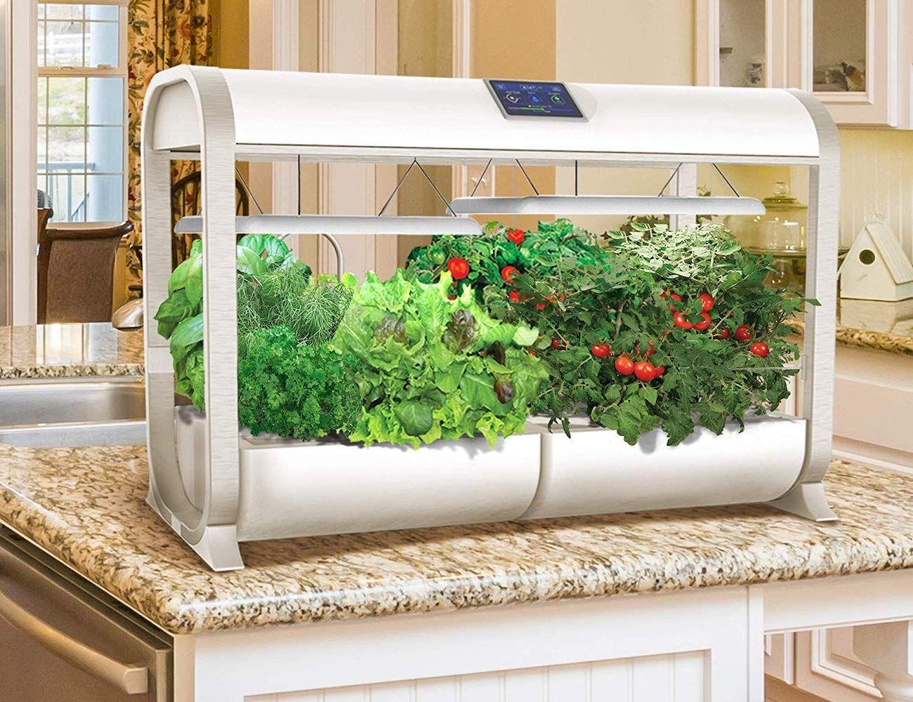 Aerogarden Farm Plus Smart Hydroponic Garden Lets You Grow 640 x 480