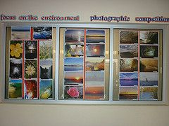 Focus on the environment - photographic competition
